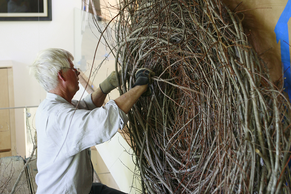 Patrick Dougherty   |   2010 Blog #1    Blog #2