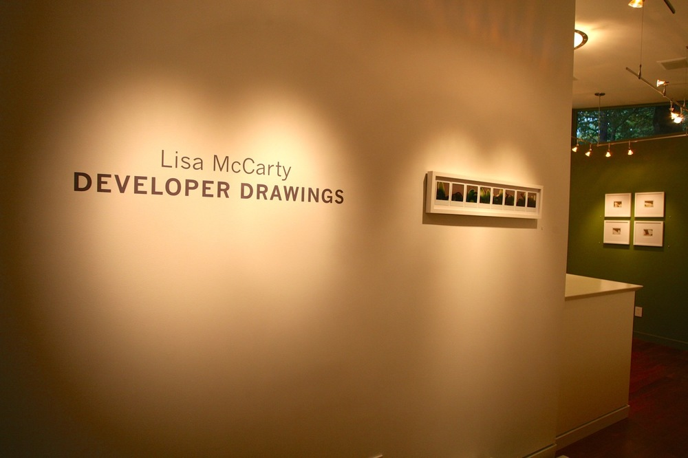 Lisa McCarty: Developer Drawings    2015     Checklist      Web