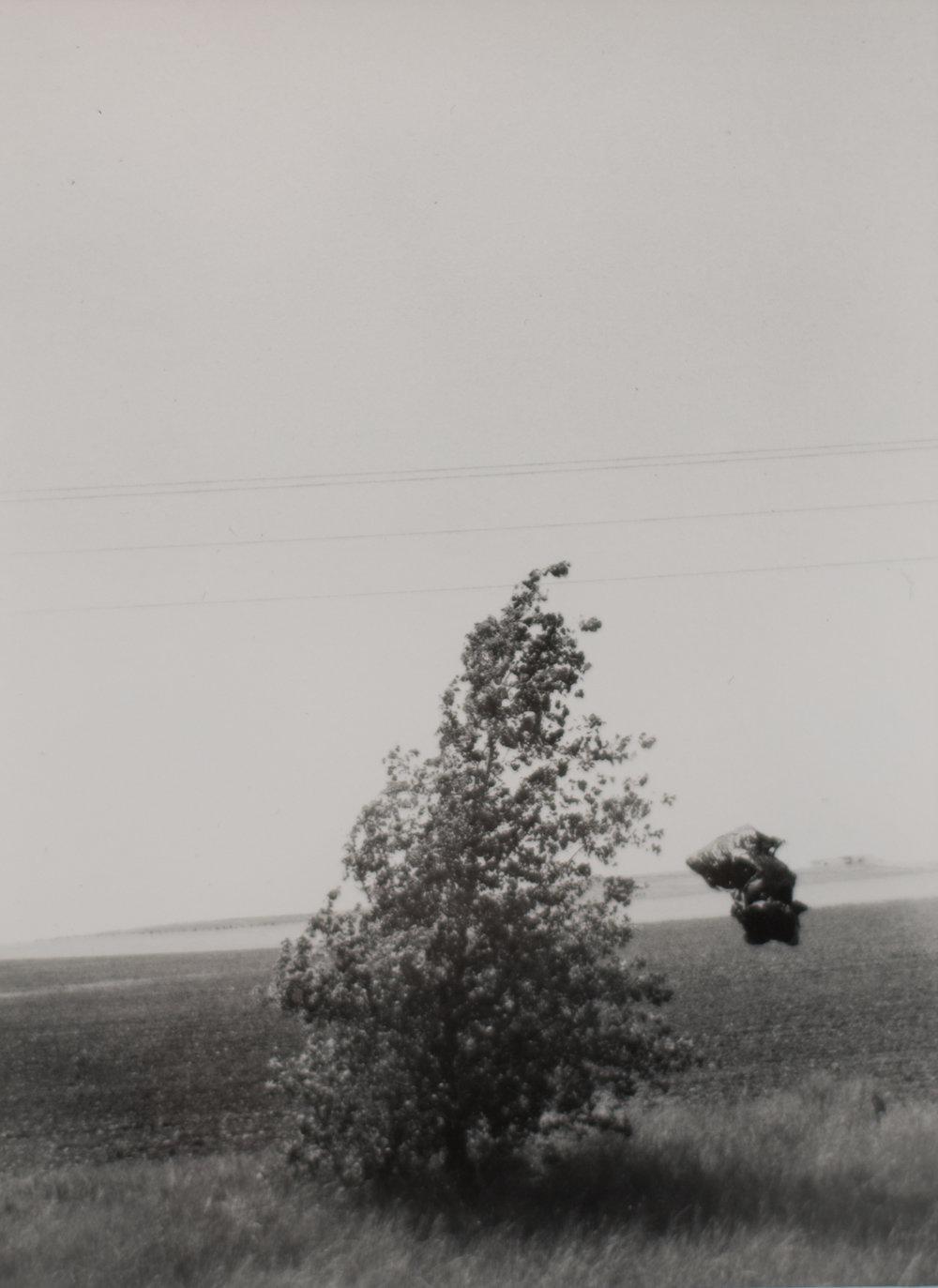 Nebraska, 2012