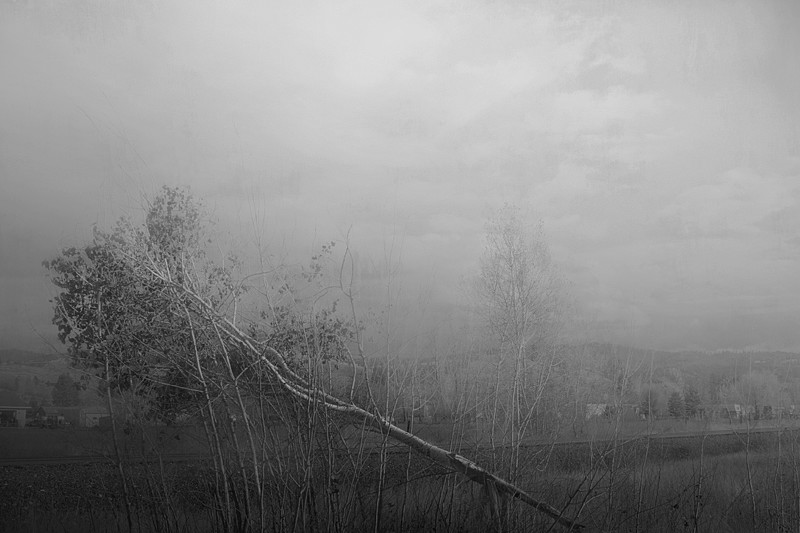 Untitled, Montana, 2006