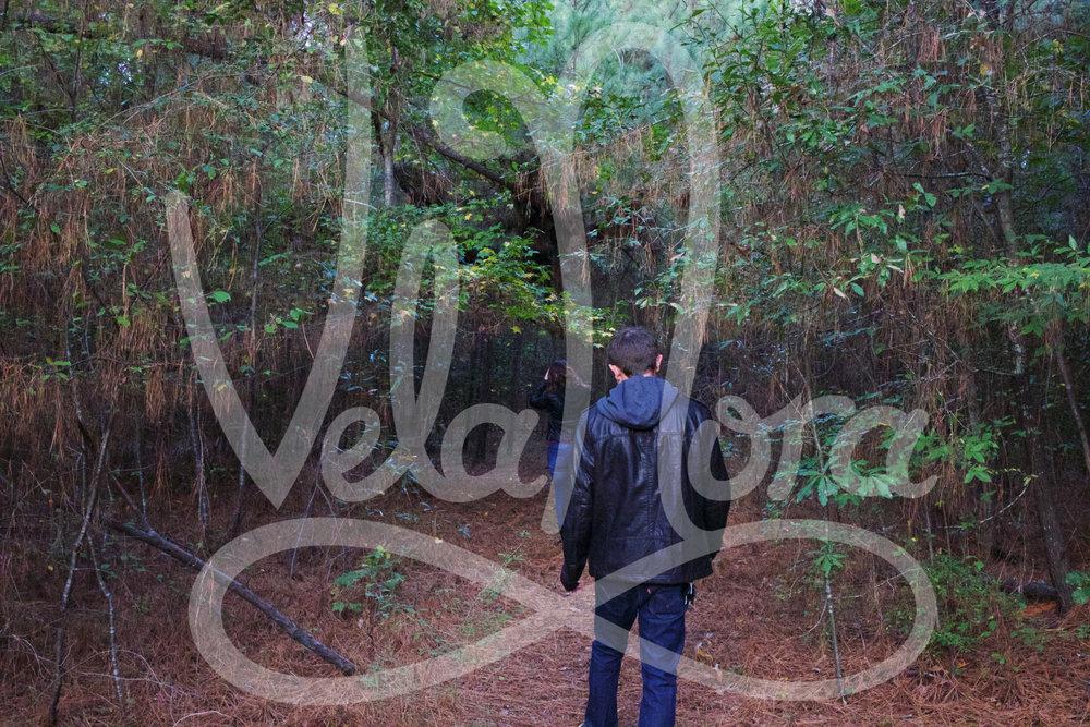 VelaNora2.jpg