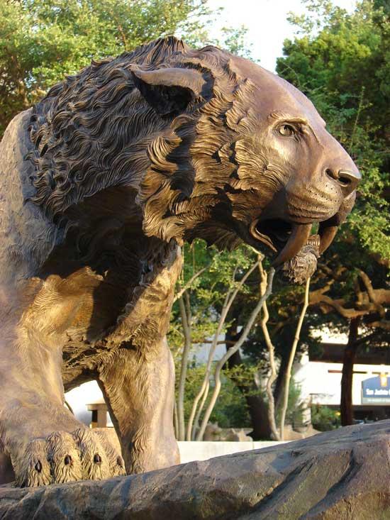 maisano-sabercat-bronze3.jpg