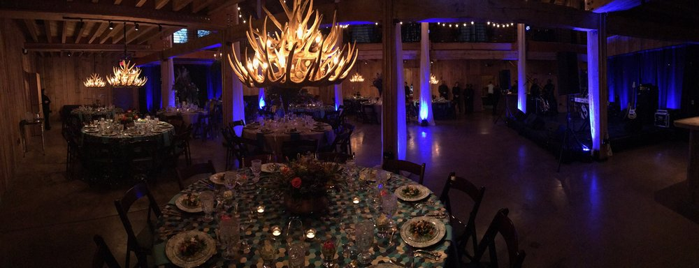 Rustic Antler Chandeliers and Up-Lighting