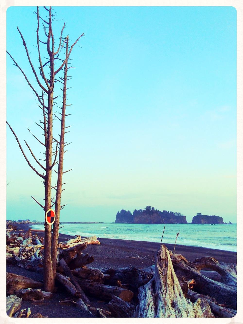 photo (4) copy 2.JPG