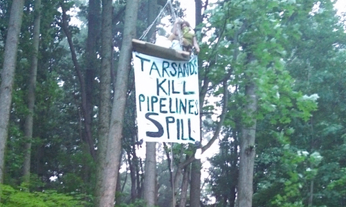 Jessica tree-sitting in protest of tar sands pipeline expansion in 2013. Photo Credit: MI CATS