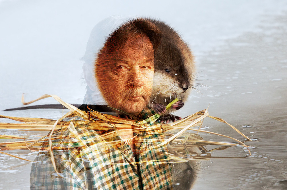 Roy and a Muskrat - Muskrat photo by Ashleigh Scully
