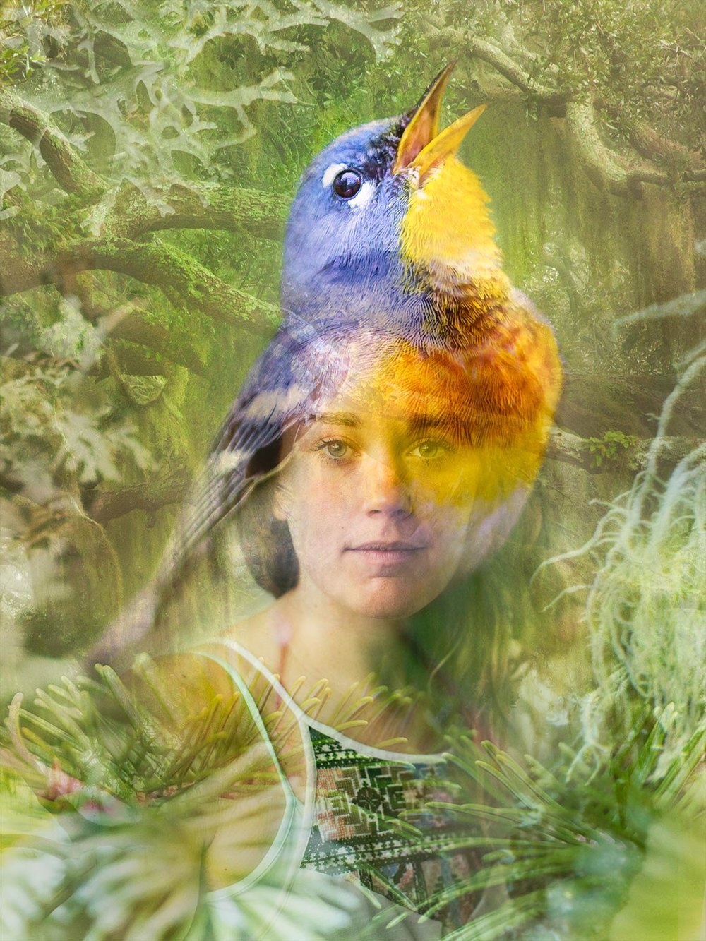 Alexandra Munters and a Northern Parula - In both southern and northern habitat