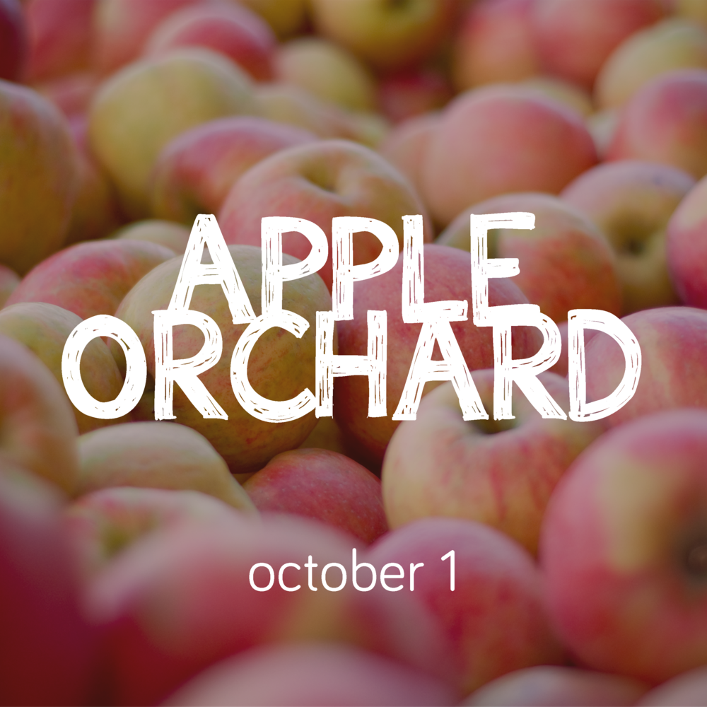 Orchard Web.png
