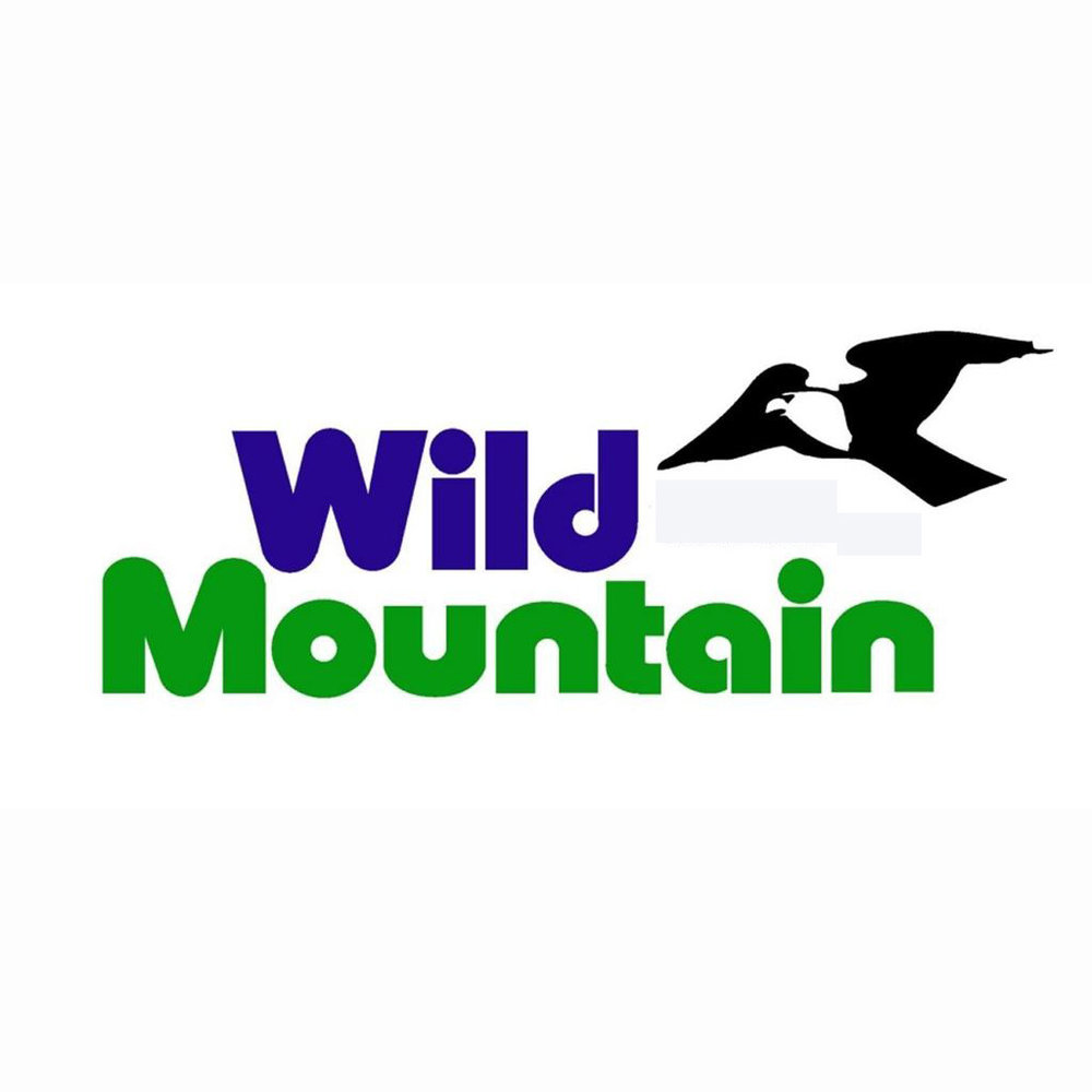 Wild Mountain.jpg