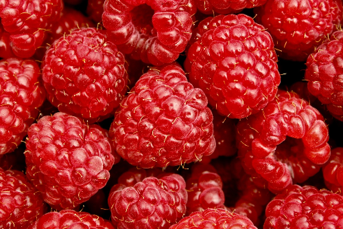 For the love of raspberries!