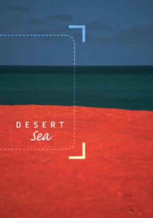 Desert Sea Identity