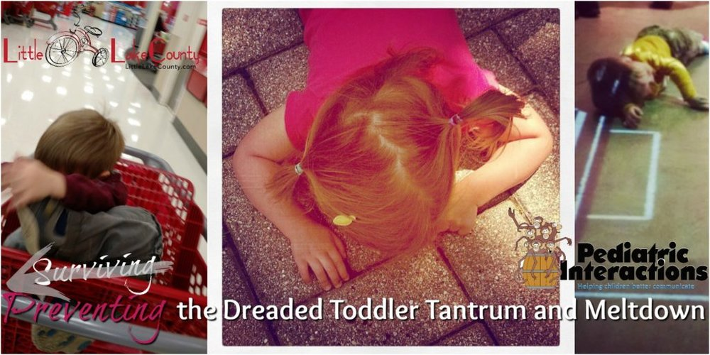toddler-meltdowns.jpg