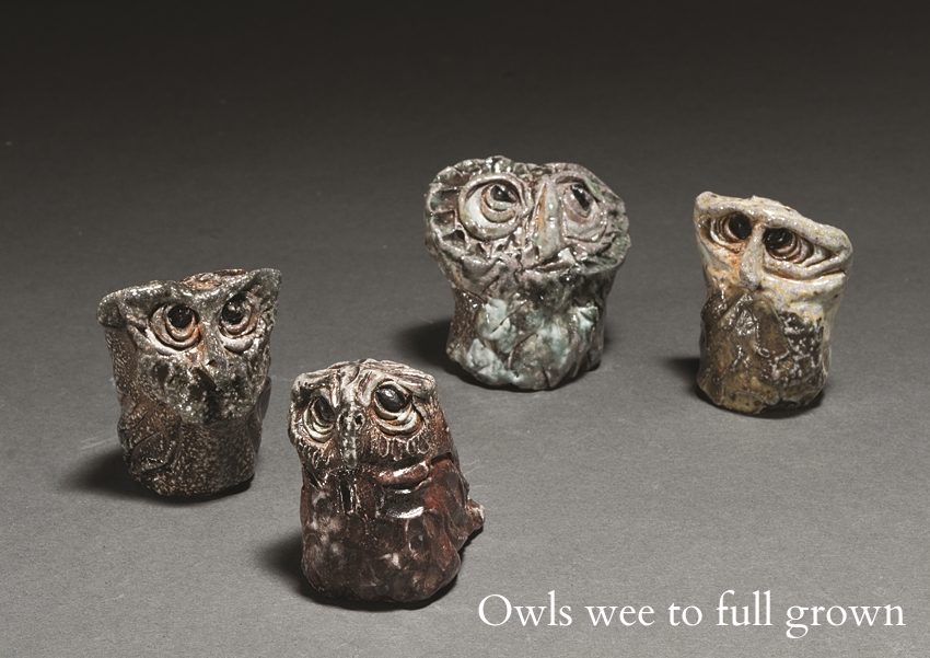 Group of Owls.jpg