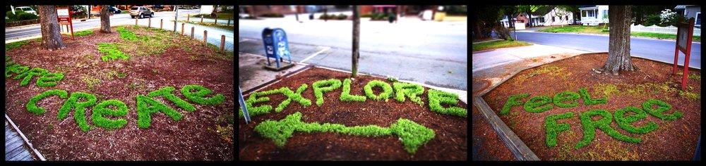 Flora 18 Tri pic.jpg