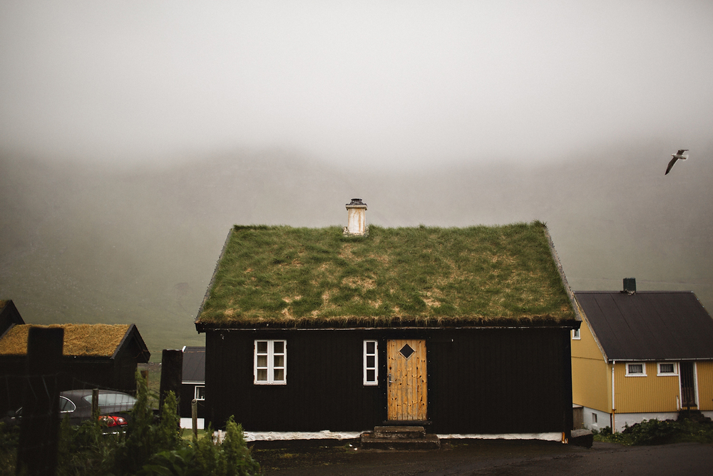 Faroe Islands Iceland Rachel Gulotta Photography-111.jpg