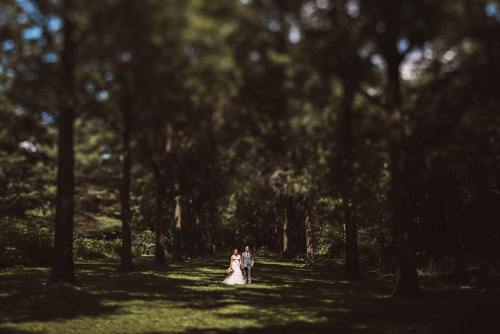 Rachel Gulotta Photography Forest Preserve Wedding-41.jpg