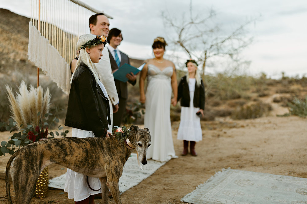 Joshua Tree Wedding Rachel Gulotta Photography-053.jpg