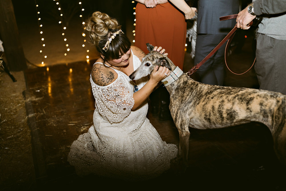 Joshua Tree Wedding Rachel Gulotta Photography-076.jpg