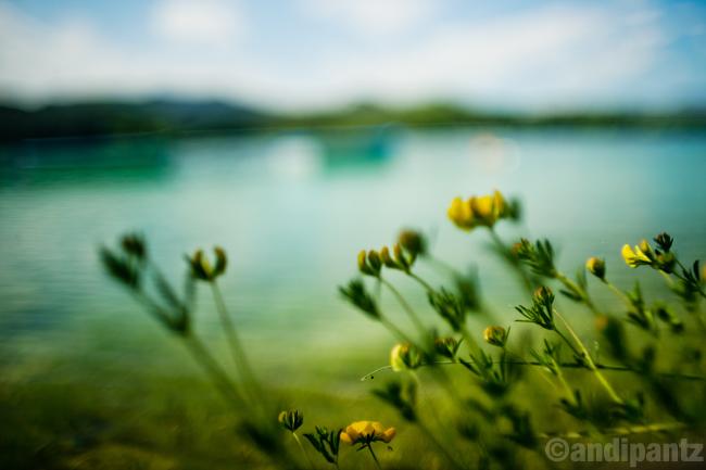 lakeside.jpg
