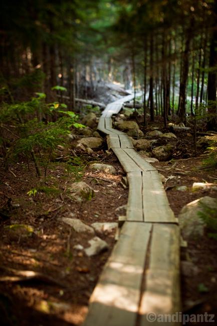 naturepath.jpg
