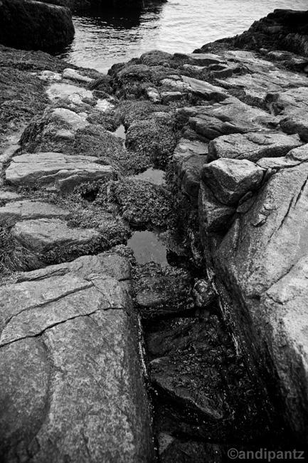 tidepoolrocks1.jpg