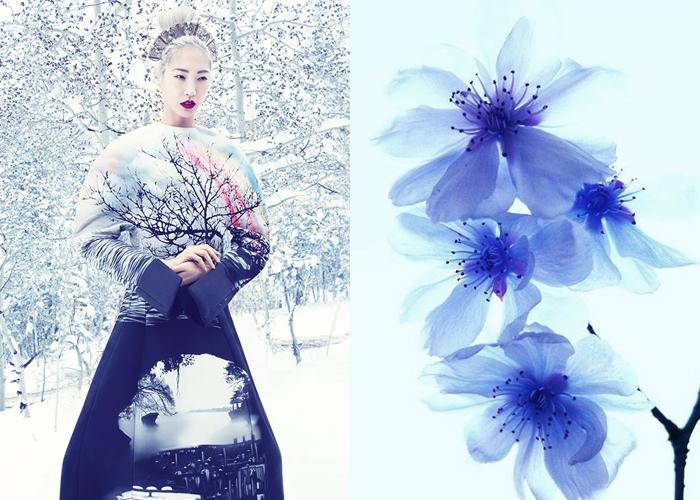 Mini Moodboard: Geisha. snow angel, cherry blossom, femininity, artist