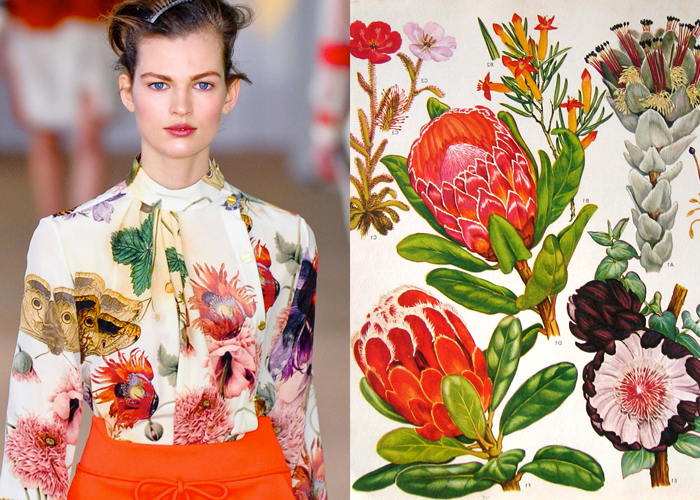 Mini Mood Board: Botanicals. Gorgeous blooms from Preen Fall 2012 and vintage art prints