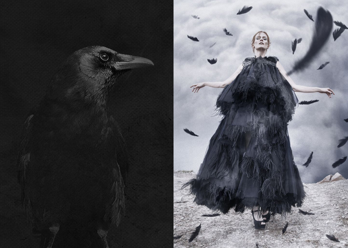 Mini Mood Board: Black Magic. Otherworldly crow brings the voice of the dead #witch #blackmagic