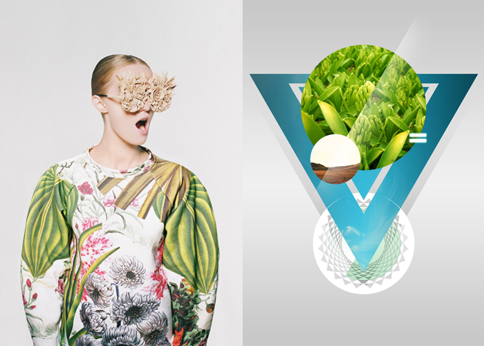 MINI MOOD BOARD: PHOTOSYNTHESIS. Image collages as both context and content from L) Masha Reva x SNDCT and R) András Szőrös