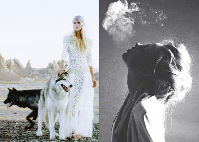 MINI MOOD BOARD: CANINE. Featuring Isabel Lucas from Angus Stone's Bird on the Buffalo video and The Girl and the Wolf