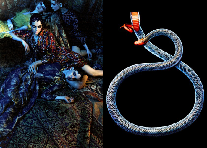 MINI MOOD BOARD: SNAKE CHARMER. Photos by Craig McDean and Mark Laita #nancyherrmann #moodboard #snakecharmer