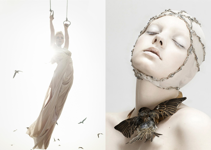 MINI MOOD BOARD: CAGED. Photos by Solve Sundsbo and Luzena Adams #nancyherrmann #moodboard