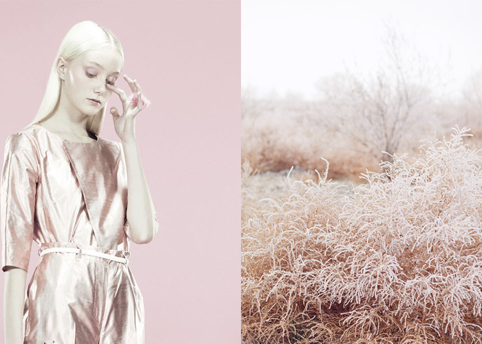MINI MOOD BOARD: FROSTED. Photos by Emilio Tini and Ciara Richardson. #nancyherrmann #moodboard #frosted