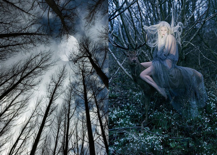 MINI MOOD BOARD: MOONSHINE. Images by Prager and Tim Walker. #nancyherrmann #moodboard #moonshine