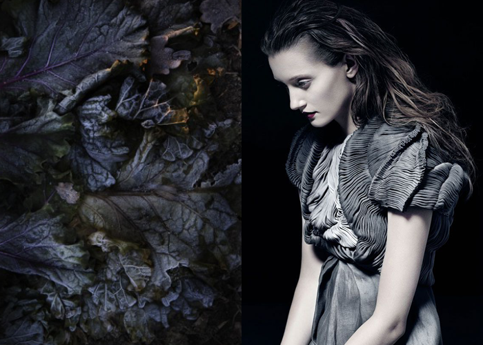 MINI MOOD BOARD: WITHER. Photo by Lena Koller with fashion by Yiqing Yin. #nancyherrmann #moodboard #wither