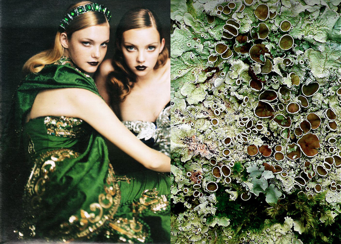 MINI MOOD BOARD: ADORNED. Photos by Paolo Roversi and Leenda K. #nancyherrmann #moodboard #adorned