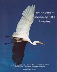 book-soaring-high-paperback.png