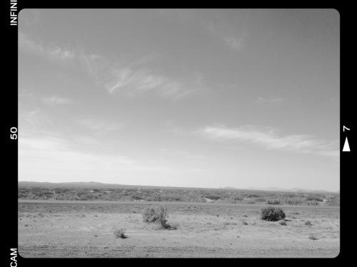 tx-landscape.jpg