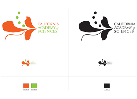 Academy of Sciences Logo Re-design