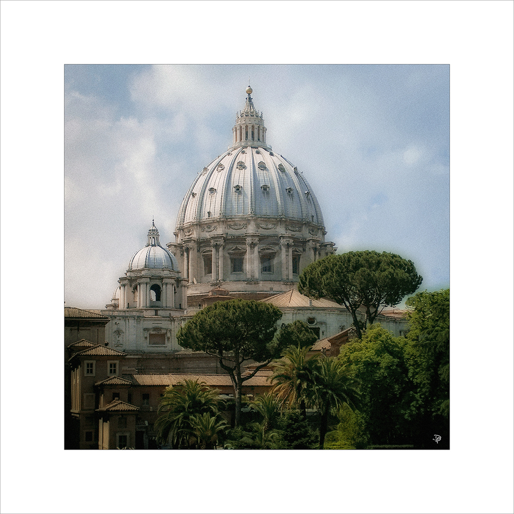St. Peter's Basilica and pines.