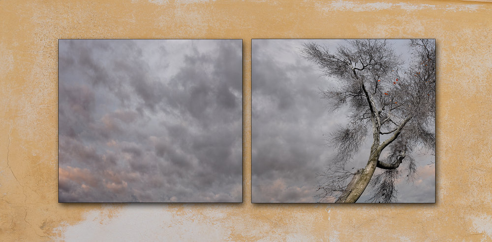 ' Last Leaves of Autumn ' ( diptych )