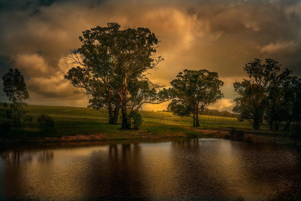 ' Golden Pond '