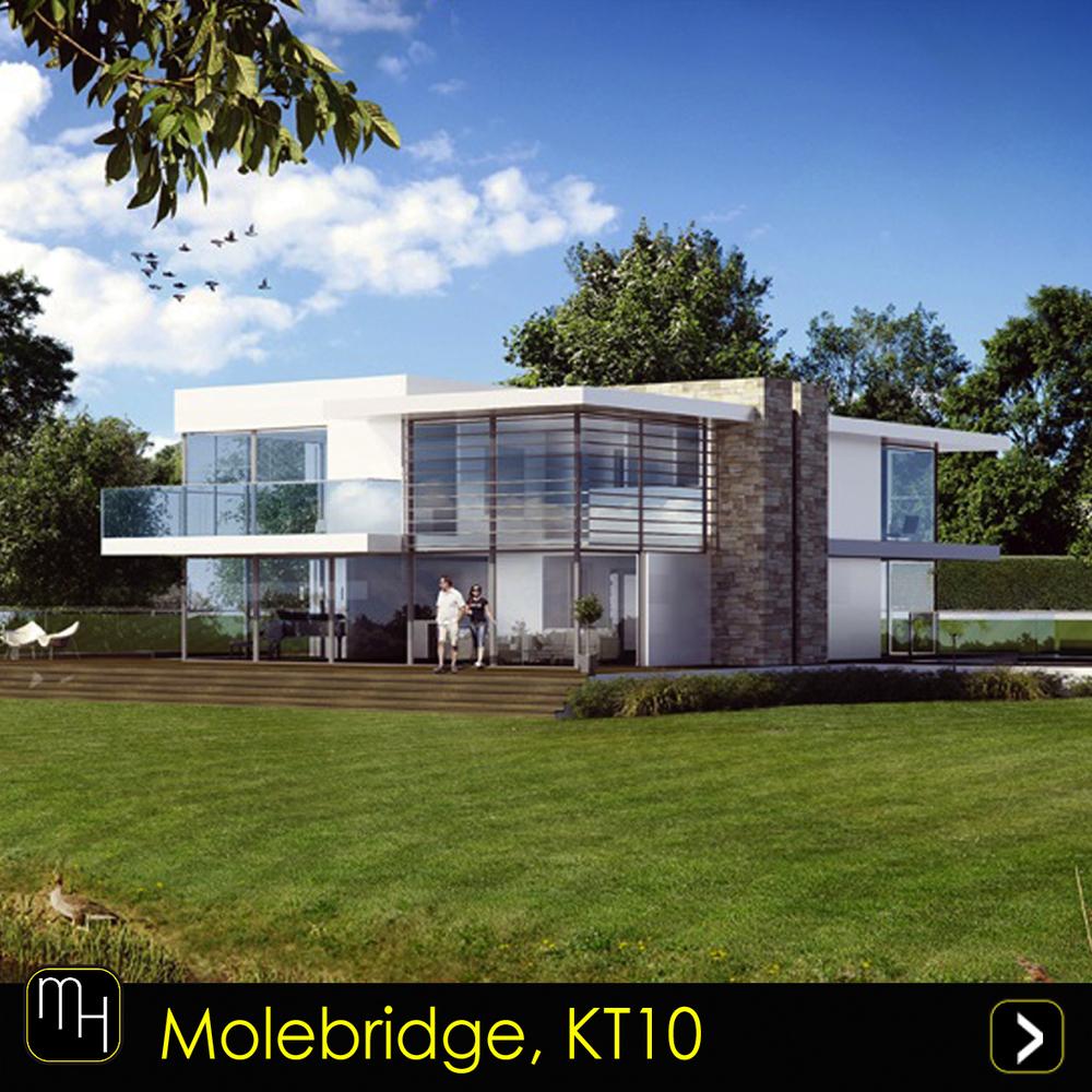 Molebridge.jpg
