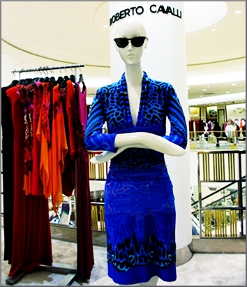 Cavalli in blue, the perfect dress for lunch.