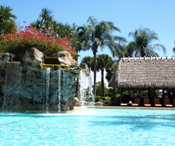 Pool with a tropical feeling, at the gorgeous pool at the Hyatt Regency Bonaventure.