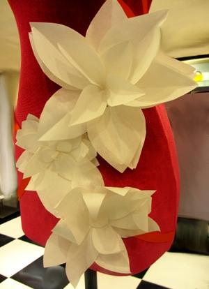 flowerfront 300pgd!.JPG