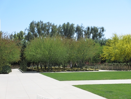 Garden views and reflecting pool at Sunnylands Visitor's Center Café patio.