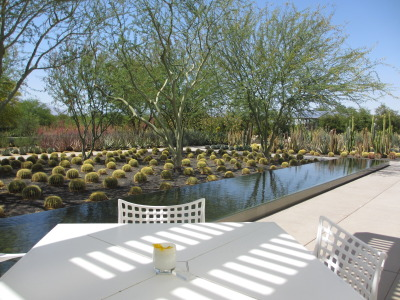 View of reflecting pool and Golden Barrel cactus at Sunnylands gardens Café.