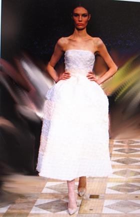 Dior 2012 w 280pdress2.JPG