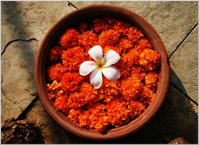 A bowl of Marigolds, the flower of India.